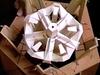 Bionic model of Aristotle's lantern